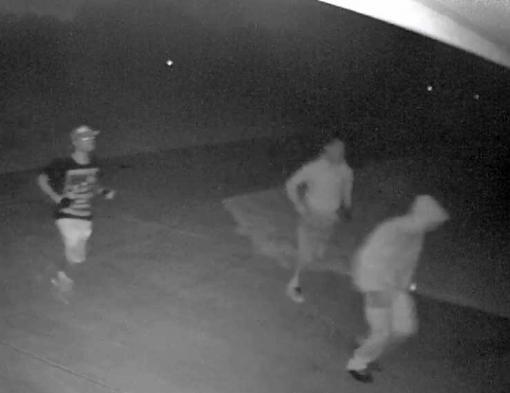 Vehicle Burglars